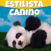Estetica Canina Videocurso Y Libros Paso A Paso+ Regalos2015