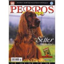 Revista De Perros El Rottweiler Revista Del Setter Irlandes