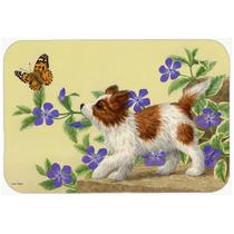 Papillon Del Perrito De La Cocina O El Baño Mat 24x36 Asa22