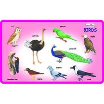 Early Years Juguete - Juego Creativo Y Aprender Birds Aprend