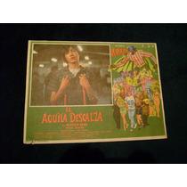 El Aguila Descalza Alfonso Arau Lobby Card Cartel Poster B