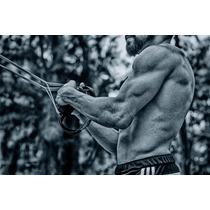 Crossfit Fitness Entrenamiento En Suspensión Ligas Ejercicio