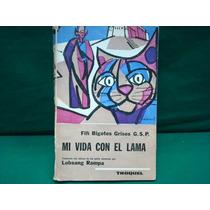 Fifí Bigotes Grises G.s.p., Mi Vida Con El Lama.