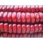40 Semillas Maiz Rojo De Catemaco - Criollo Exotico Siembra