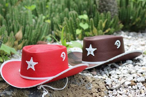 Fiesta Vaquera Sombrero Cowboy Sheriff Infantil 50 Piezas 2bfe89e7c7e
