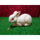 Conejo, Figura De Resina, 13 X 23 X 10cm