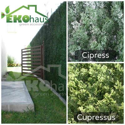Muros verdes queretaro