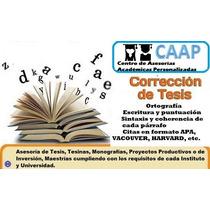 Corección De Tesis Tesinas Monografías Proyectos