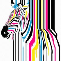 Cuadro Decorativo 2 Pz 30x30 Zebras Cmyk