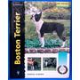 Libro En Español Boston Terrier Serie Excellence Original