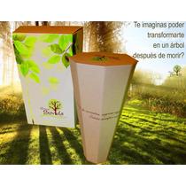 Urna Biovida ***urnas Funerarias 100% Biodegradables***
