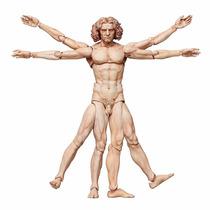 Pre Orden Figma The Table Museum: Da Vinci - Hombre Vitruvio