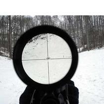 Mira Telescópica Clarity 4x20 Para Ballesta O Rifle M-envíos