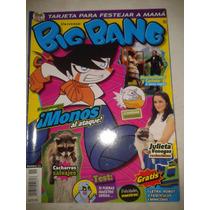 Revista Big Bang #11 Julieta Venegas Rockerisima Lbf