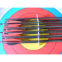 Tiro Con Arco Flechas Easton Platinum Xx75 1813 Envio Gratis
