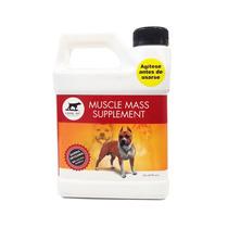 Muscle Mass, El Mejor Suplemento Para Tu Perro Atleta