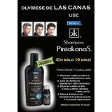 Shampoo Pinta Canas (paq 2) Original ,obscuro,medio, Claro.