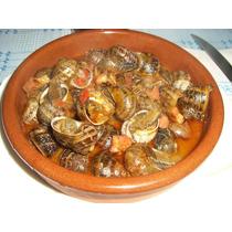 Caracol Vivo Gourmet Surtimos Restaurantes Toda La Republica