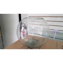Pecera De Cristal # 12 C/ Olanes Arriba (30cmx24cm)