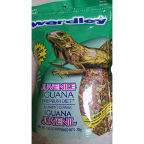 Alimento Para Iguana Marca Wardley 200g