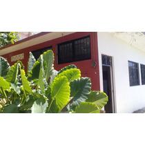 Casa Sola Tres Recamaras Un Solo Nivel Casa Nueva