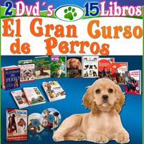 Como Educar Un Perro, Adiestramiento 15 Libros, 70 Videos