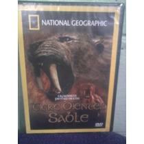 Dvd National Geographic Dinosaurios Tigre Dientes De Sable
