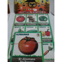 Gcg Juego Didactico Loteria Verduras Ingles Español