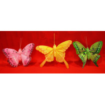 Lote De 6 Mariposas De Pluma De Ave Natural Colores Magnetic