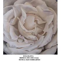 Rosa Blanca, Cuadro Al Oleo Sobre Lienzo, Ferbel Art