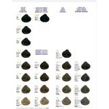 Tinte Salerm Vision Tono # 1. 1,69. 1,88  C/ Peroxido