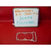 Kawasaki Ninja Ex 300 13-15 Junta Cilindros