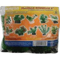 Planta Plastico 3 50pz.