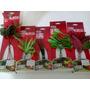 Acuario Kit De 5 Plantas De Seda Azoo Oferta !!