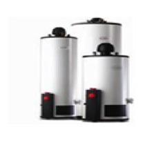 Oferta Calentador Automatico 38lts Marca Calorex Boiler