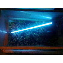 Lampara Sumergible Ultralight Para Pecera Acuario 35 Cm Au1