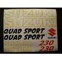 Kit De Stickers Calcomanias Para Moto Suzuki Quadsport 230