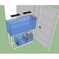 Diseño De Peceras Y Habitads Especificos