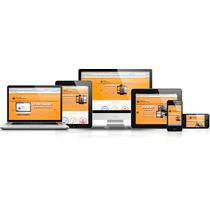 Desarrollo Web, Páginas Web, Registros En Línea A La Medida