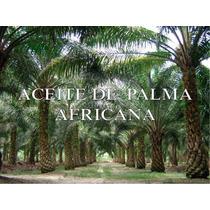 Aceite De Palma Africana Cubeta 19 Litros.