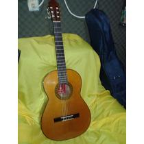 Guitarra Acústica De Estudio Guitarreria Mexicana