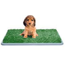 Potty Patch Tapete Entrenador Perro El Original Cachorro Maa