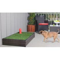 Porch Potty-tapete Para Perros-entrenamiento Cesped Automati