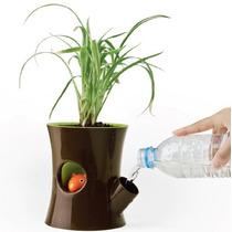Maceta Con Ardilla Diseño Divertido Cafe Con Entrada De Agua