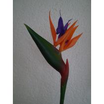 Flores Artificial Ave Del Paraiso Bfn