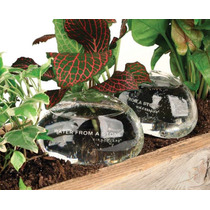 Set 2 Water From Stone Piedras Dispensadoras De Agua Plantas