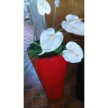 Arreglo Floral En Maceta