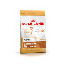 Royal Canin Labrador Retriever - Bulto De 13.6 Kg