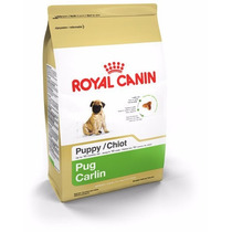 Alimento Royal Canin Pug Puppy 1.1kg, A Domicilio