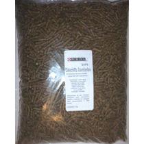 Alimento Alfalfa Pellets Balanceado Chinchillas 4 Kg Eex